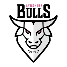 ayrshire bulls